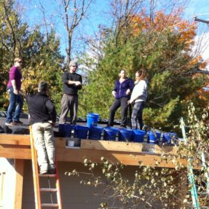 Green Roof Team Work on the Roof