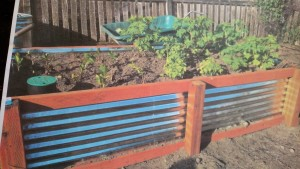 raised bed by MG Nancy Denison