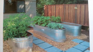 Newly installed raised beds at the home of MG Nancy Denison