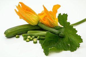 zucchini-572542_640