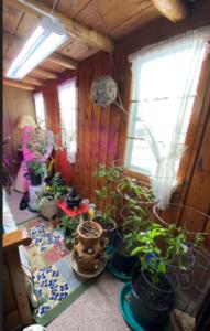 Garden Room 2020