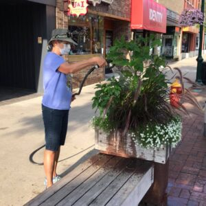 Watering at the Downtown Traverse City Pollinator Planters