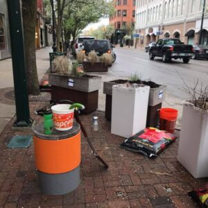 More planting for the Downtown Traverse City Pollinator Planters