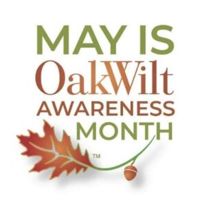 Oak Wilt Awareness Month